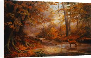 Woodland Stream by Elizabeth Halstead