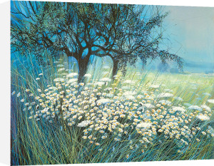 Field of Daisies by Gilbert Michaud