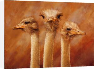 Three's a Crowd by Henk van Zanten