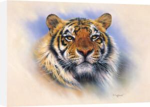 Tiger Tiger Burning Bright by Stuart Coffield