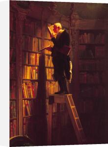 The Bookworm (xl) by Carl Spitzweg