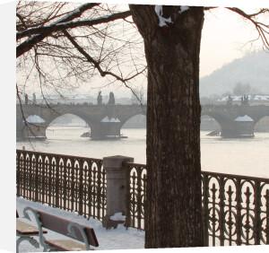 Winter Light II by Bill Philip