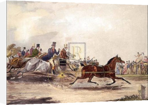 The celebrated Tom by Francis Calcraft Turner