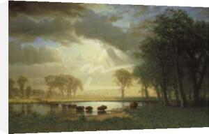 The Buffalo Trail, c.1867 by Albert Bierstadt