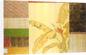 Banana Palm II by Julieann Johnson