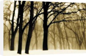 Past Dreams (small) by David Lorenz Winston