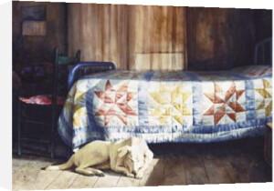 Dog nap by Mark Stewart