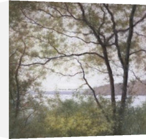 Lakeside Trees I by John Folchi