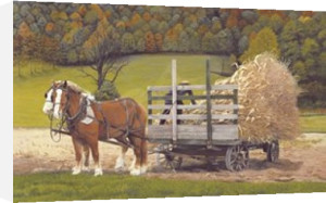 Amish Harvest by Green