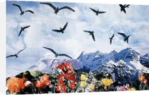 A Dozen Seagulls, 1997 by Peter Hutchinson
