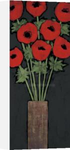 Red Hot Poppies by Rachel Rafferty