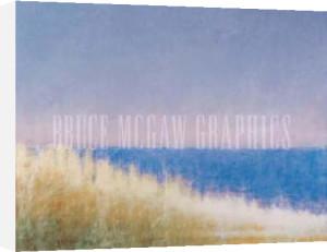 Yellow Beach Grass - Blue Water by Judy Friday