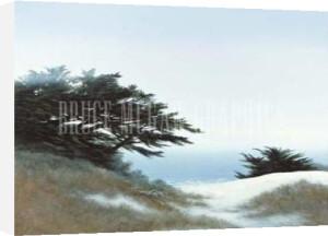 Ocean Blue by Larry Miller