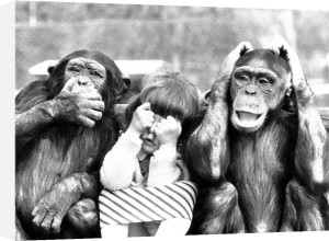 Speak no evil See no evil Hear no evil by John Drysdale