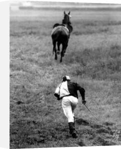 Jockey chasing his horse by Vladimir David