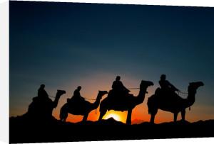 Silhouettes in the Arabian desert, Egypt by Roland Marske