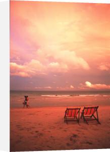 Beach deckchairs, Koh Samui, Thailand by Heinz Krimmer