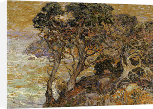 Point Lobos, Monterey Coast by Franz A. Bischoff