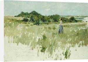 Shinnecock Hills, 1891 by William Merritt Chase