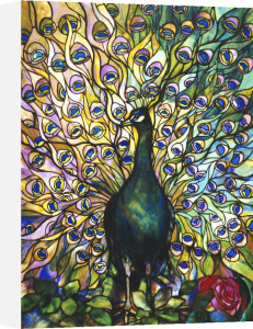 Peacock Window by Tiffany Studios