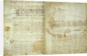 The Codex Hammer Pages 48-51 by Leonardo da Vinci