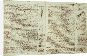 The Codex Hammer by Leonardo da Vinci