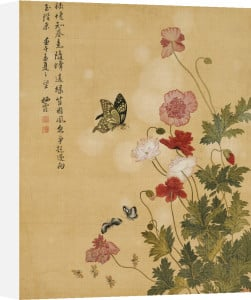 Corn Poppy And Butterflies, 1702 by Ma Yuanyu