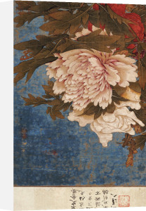 Peonies. From An Album Of Song, Yuan And Ming Paintings by Shi Gang