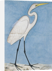 A Great Egret. Lucknow School,C. 1790 by Christie's Images