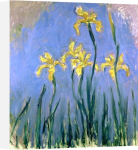 Yellow Irises, Circa 1918 by Claude Monet