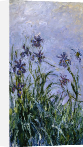 Iris Mauves, 1914 by Claude Monet