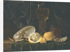 Nautilus Shell, A Roemer Beer Glass, An Orange And A Lemon On A Pewter Plate by Christiaen Luyckx