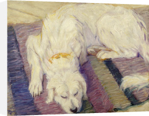 Liegender Hund (Hundeportrat), 1909 by Franz Marc
