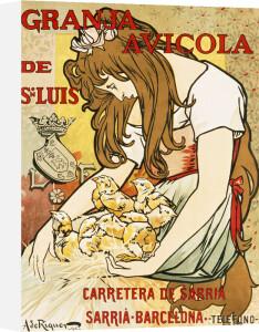 Granja Avicola De Sn.Luis, 1896 by Alejandro de Riquer