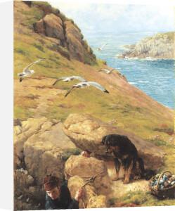 The Gull Catcher, 1877 by James Clarke Hook