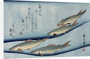 River trout by Ando Hiroshige