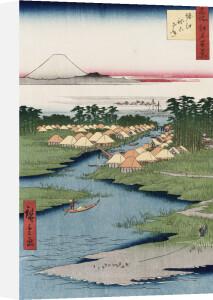 'Nekozane At Horikiri by Ando Hiroshige