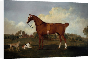 A Bay Hunter And Two Hounds In A Landscape, With A Mansion Beyond by Charles Towne