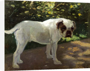 A Bulldog On A Garden Path by Arthur Heyer