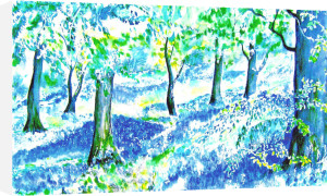 Cumbria Bluebell Wood by Luisa Gaye Ayre