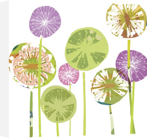 Allium Spheres by Louise Cunningham