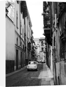 Cinquecento Bianco by Flo Smith