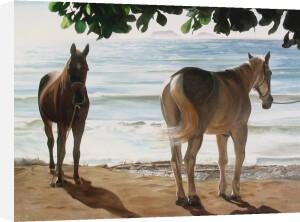 Caballos del Mar by James Knowles