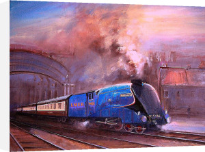 Mallard Leaving York by Martin Ulbricht