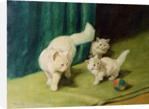 White Persian Cat with Two Kittens by Arthur Heyer