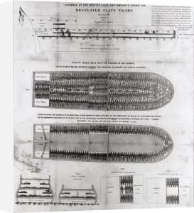 The British Slave Ship 'Brookes' by American School