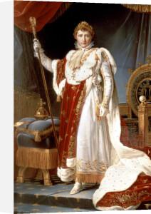 Napoleon in Coronation Robes c.1804 by Francois Georgin