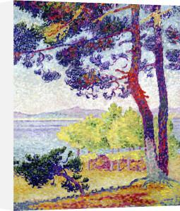 Afternoon at Pardigon Var 1907 by Henri-Edmond Cross