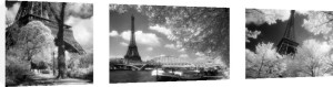 Paris Triptych by David Noton