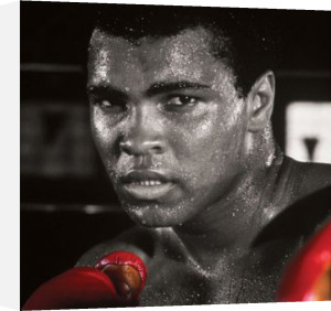 Muhammad Ali (Boxing Gloves) by Celebrity Image